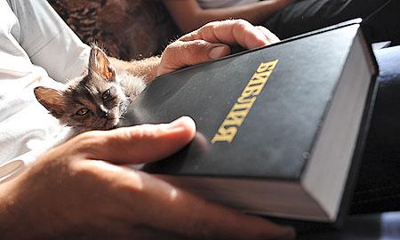 В Писании сказано: люби ближнего своего. Бывшие наркоманы в равной степени относят это и к людям, и к животным: в Центре не только читают Библию, но и заботятся о маленькой беспородной Аське. ей тоже нужно человеческое тепло