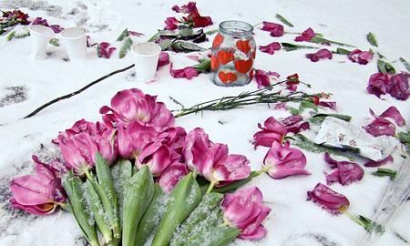 """Цветы в память о жертвах """"Голливуда"""""""