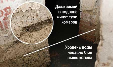 Вот так выглядит подвал дома №47 по Чкалова.