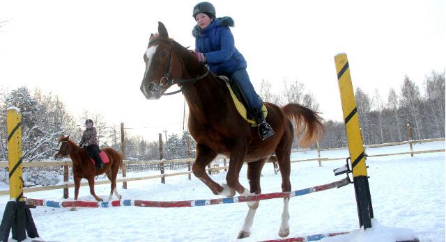 Насте Мозгановой 11 лет. Она часто приходила на конюшню наблюдать за занятиями старших ребят, поскольку живет в Новоалексеевке. В пять лет ее впервые прокатили верхом, с этого и началось. Сегодня в копилке Насти уже второе место по конкуру. Тренируется девочка на арабском скакуне Баксе. Жеребцу также 11 лет, а из заслуг — более десятка призовых мест.