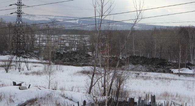 Вид на Корабельную рощу из окна дома 1б по улице Комсомольской. Жители обеспокоены, ведь многие из них сами высаживали там деревья.