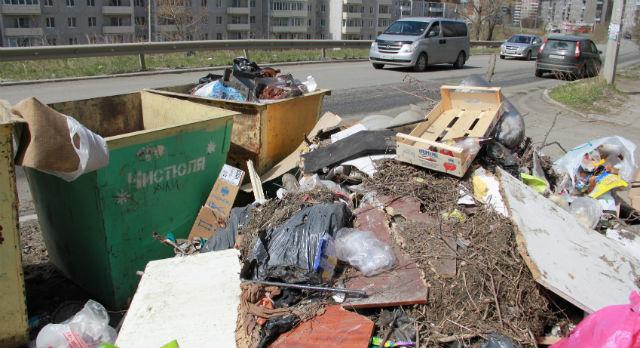 Как уверяют подрядчики по вывозу мусора, многие свалки во дворах образованы по вине самих жителей города: кто-то валит незаконно, кто-то не доносит до баков.