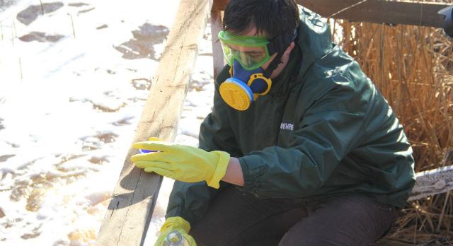 Респиратор, резиновые перчатки — воду из Пахотки гринписовец Рашид Алимов набирает аккуратно