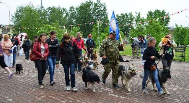 Парад клуба служебного собаководства.