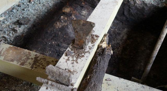 Зубила, топорища, пряжки... Что еще скрывает в себе земля под домом 1905 года постройки?
