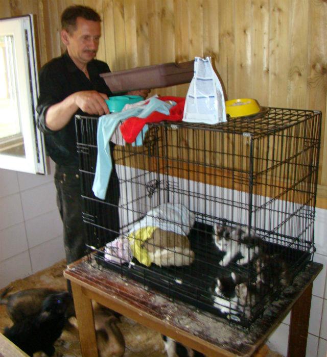Ян Гурвич вот уже год по три-четыре раза в неделю приходит в приют,  чтобы ухаживать за животными. «Волонтерам мы всегда рады», — комментирует руководитель общества защиты животных Юлия Воронина.