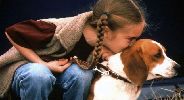 Фото с сайта mimi40.m.i.pic.centerblog.net
