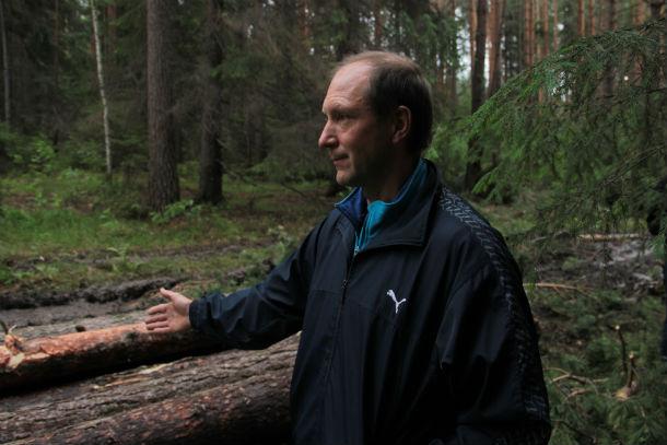 Николай Тарбеев уверен, что такие глубокие колеи, которые образовались в результате рубки леса, никаким снегом не исправить. Фото Анны Неволиной