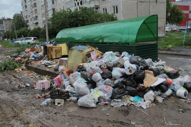 Железные баки на этой площадке, в которые до прибытия евроконтейнеров люди должны были складывать мусор, почему-то убрали за новую конструкцию. Подобраться к ним сейчас не так просто. Фото Анны Неволиной