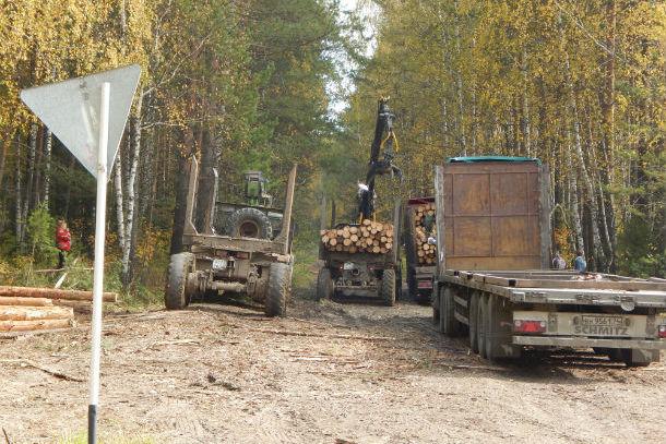 Лесовозы на горе Теплой — обычное явление. Фото Дениса Ярина