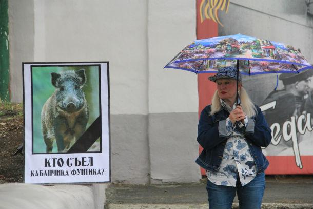 Общественница Ольга Варганова провела одиночный пикет в защиту муниципальных животных Фото Анны Неволиной