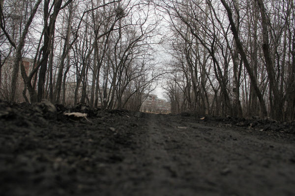 Со стороны поселка Первомайка постоянно заезжают автомобили, портят землю и оставляют грязь. Фото Анны Неволиной