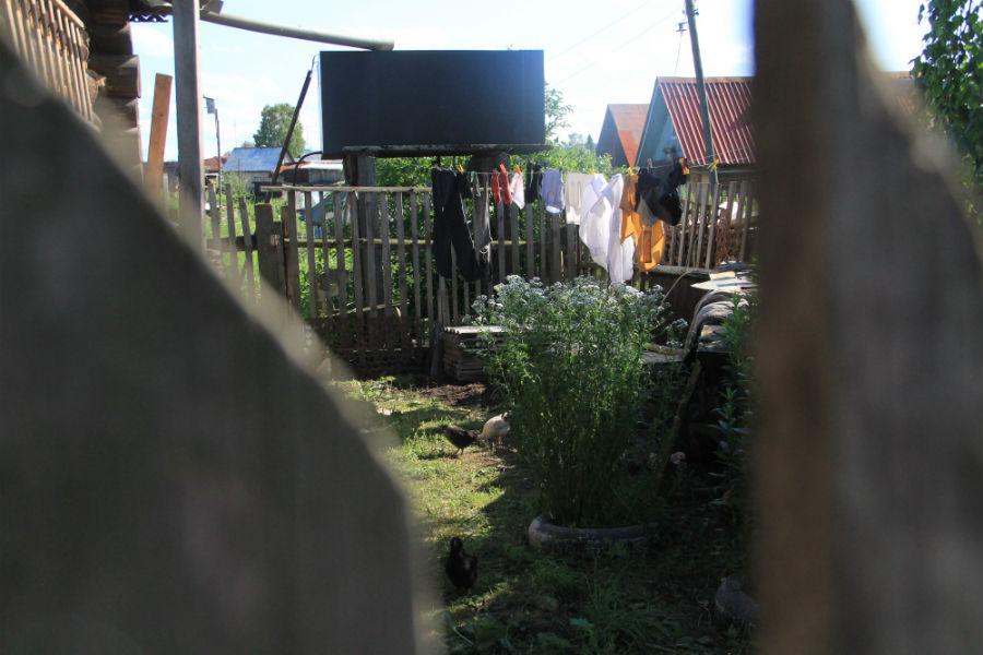У каждого в деревне свои заботы Фото Анны Неволиной