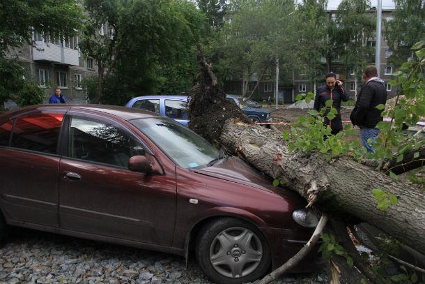 7 июля 2015 года в 9 утра в Первоуральске произошло ЧП: четыре автомобиля оказались под стволами рухнувших деревьев Фото Анны Неволиной