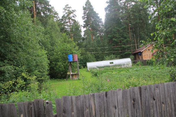 На участке в 0,6 Га построены теплица, дом, разбит огород. Все — с нарушением  закона Фото Анны Неволиной