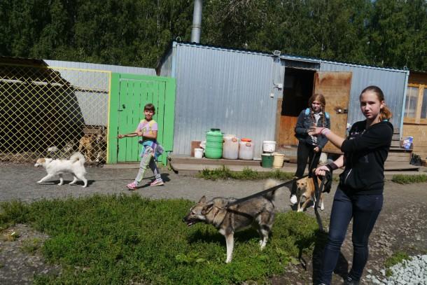 Субботники очень помогают обществу защиты животных: за один день люди сообща успевают сделать массу вещей