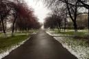 #МойПервоуральск. Фото от Алены Светкиной