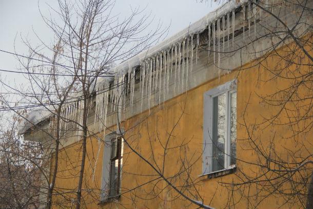 Дом №11 по ул. Медиков Фото Анны Неволиной