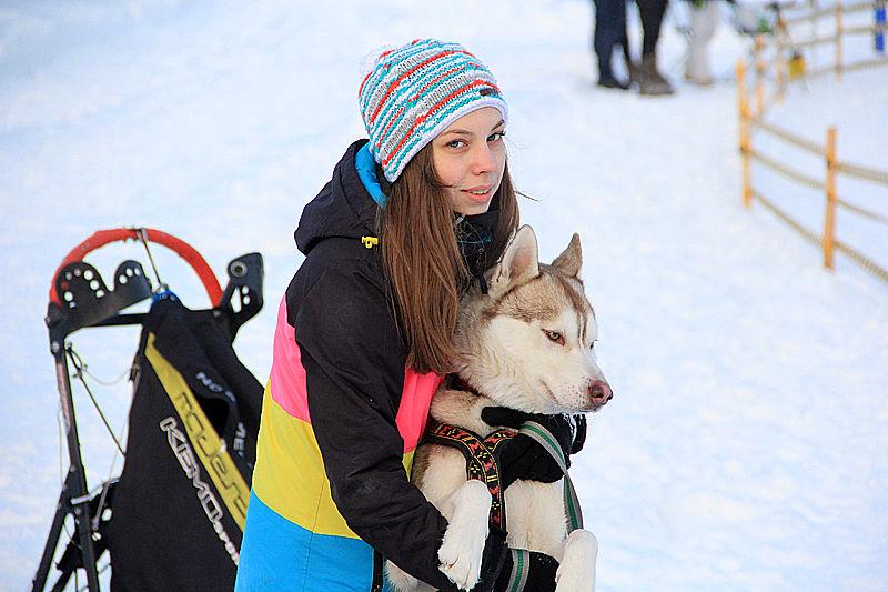 В Первоуральске прошли соревнования по ездовому спорту. Фото