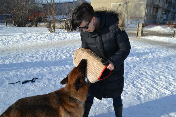 Ни в коем случае не убегайте от собаки - не получится, постарайтесь защитить себя подручными предметами  Фото Екатерины Каладжиди