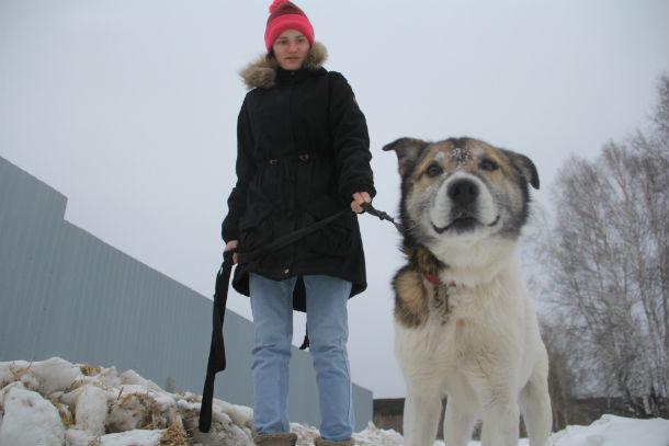 Елизавета Каминская целый день провела в приюте для животных - помогала волонтерам  Фото Анны Неволиной