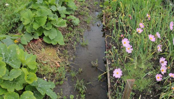 Каждый год огороды и дома жителей поселка Доломитовый страдают от паводка Фото из архива редакции