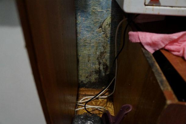 Все стены в комнате съела плесень  Фото Ольги Хмелевой