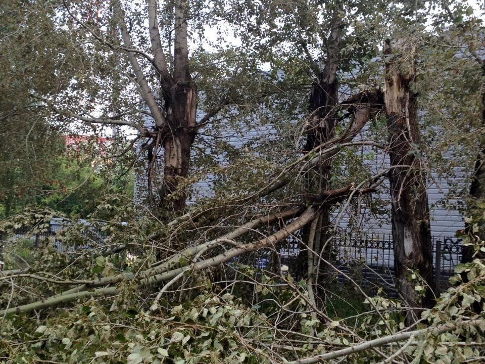 Коммунальщики Первоуральска ликвидируют последствия урагана. Фото читателей