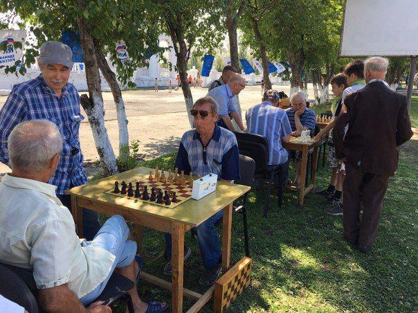 Соревнования шахматистов Фото Марии Поповой