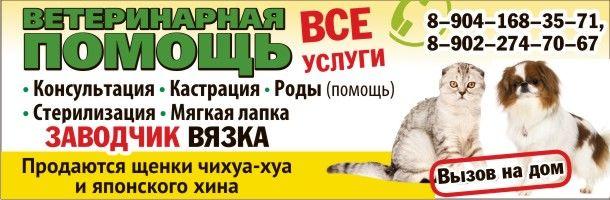 gorbenko_sajt