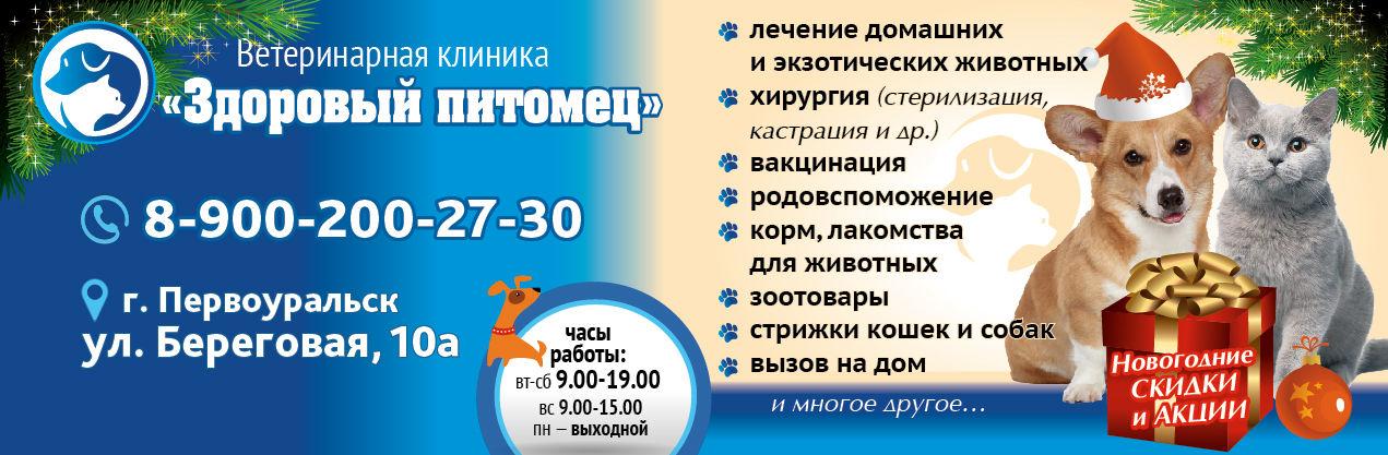 na-sajt-01-01-01-01