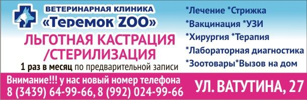 shvetsov_sajt