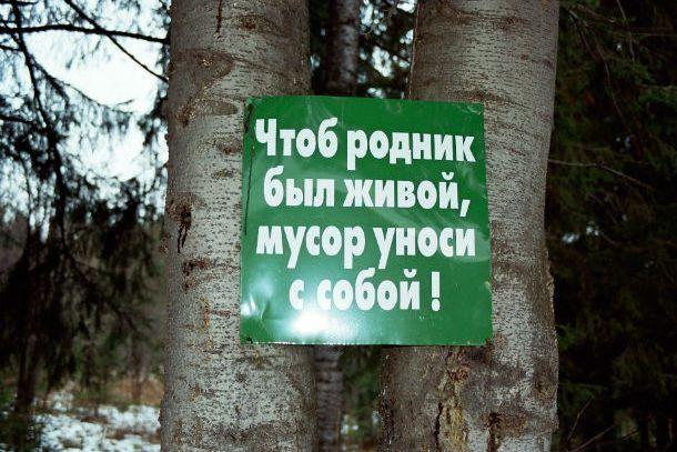 """Фото предоставлено клубом """"Абрис"""""""