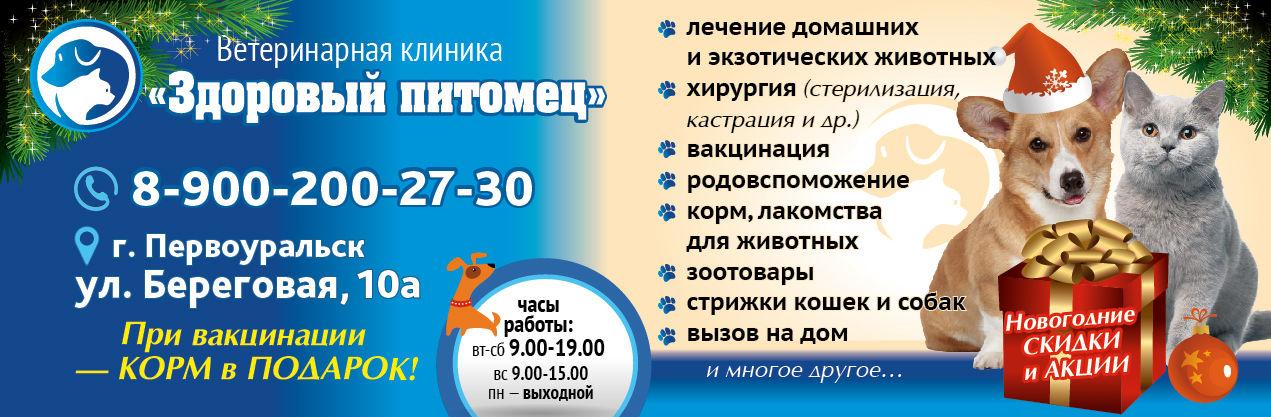na-sajt-01-01-01-01-01-01