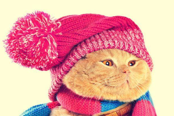 Фото с сайта photo.99px.ru