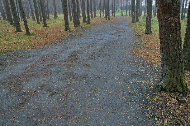 ВКазани навыходные предполагается дождь, мокрый снег изаморозки