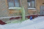 zelenyj-sneg