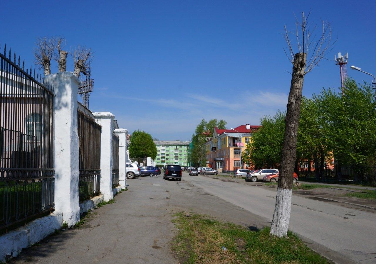 derevya-1