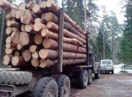 lesovoz-820x600