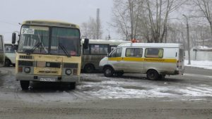 avtobusy1
