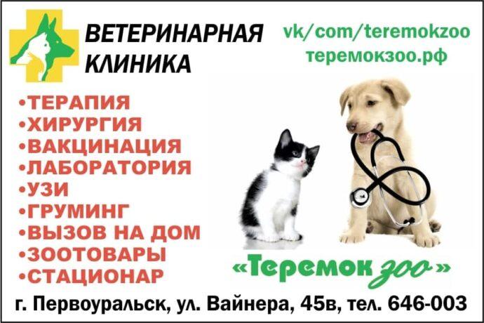 photo_2021-02-11_13-52-55
